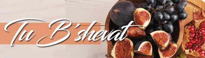 tu_beshvat-4-menu